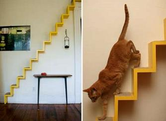 cat-wall-mounted-walkway
